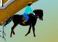 Приключение диких лошадей