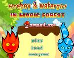 Огонь и Вода в волшебной стране